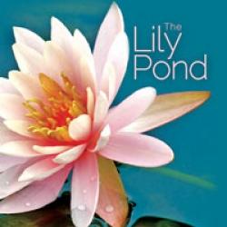 Lili pond