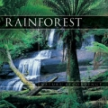 Rainforest (deštný prales)